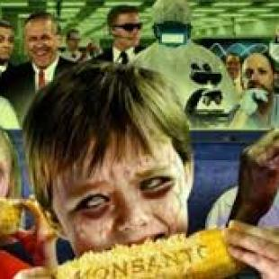 Monsanto y Blackwater, el vínculo imperial