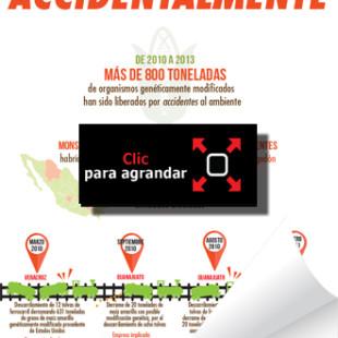 APIA107.jpg