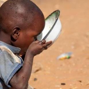 Según la ONU morirán cerca de 6 millones de niños por causas evitables en 2015