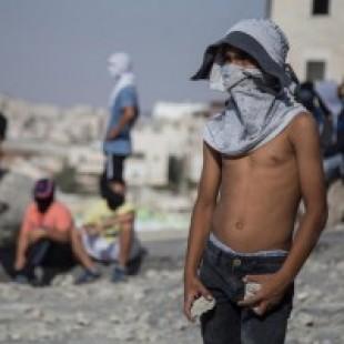 Llamado internacional de la juventud palestina