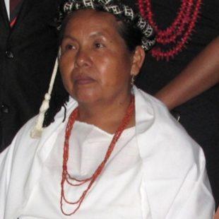 CNI: Eligen a Concejo Indígena de Gobierno para México y a su vocera, María de Jesús Patricio Martínez