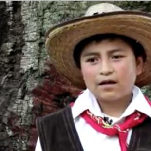 """Todo esto es agua, es vida"""". Xochicuautla presenta proyecto alternativo de autopista para no destruir su bosque"""